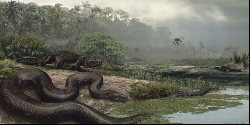 Scientists find world's biggest snake in Colombia